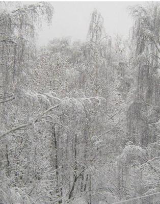 Зима..вид из моего окошка...