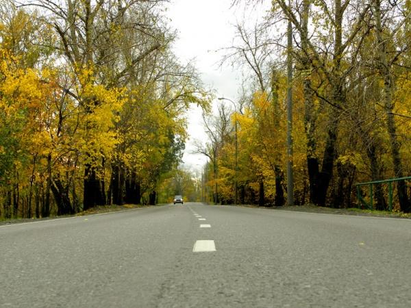 Осень на Большой Косинской