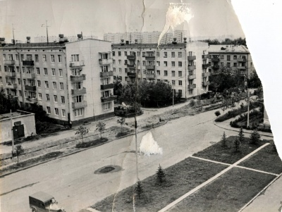 1965 год. Оренбургская улица. Свежепосаженные голубые ели