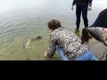 Торжественный впуск 300 кг живой рыбы в Белое Озеро. Апрель 2013 года.