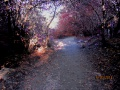 Дорога к Святому озеру