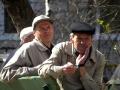 Петрович с Анатоличем