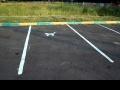 Парковочное место для котят в Кожухово