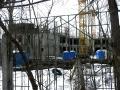 Строительство детского сада №74 на Ветлужской улиц