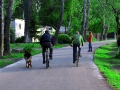 Сказочные велосипедисты