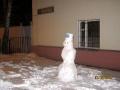 Снеговик или снежная баба?)