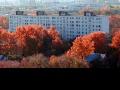 Дом 24 на Большой Косинской. Осень 2013.