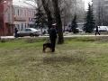 Одинокий мужчина с собачкой