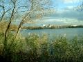 На Белом озере в Косино. Ноябрь 2013.
